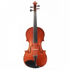 Violine Pascal Hornung